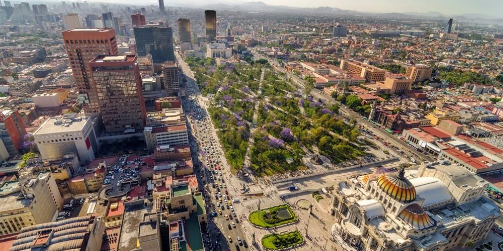Condor Verde (Mexico city, Mexico)