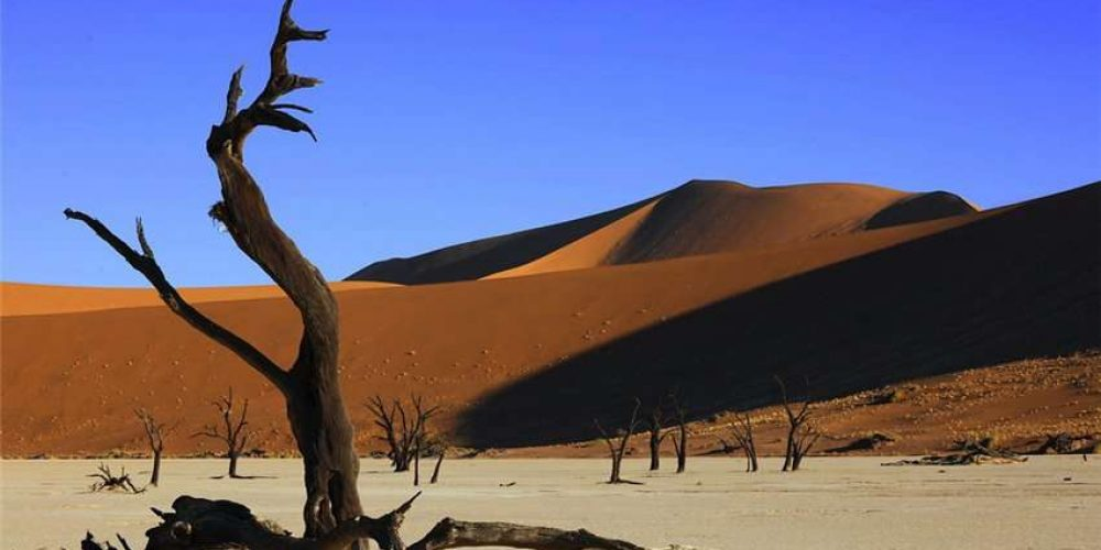 Abenteuer Afrika Safari DMC (Swakopmund, Namibia)