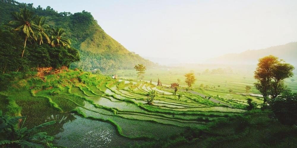 Polow Indonesia Tour and Travel (Bali, Indonesia)