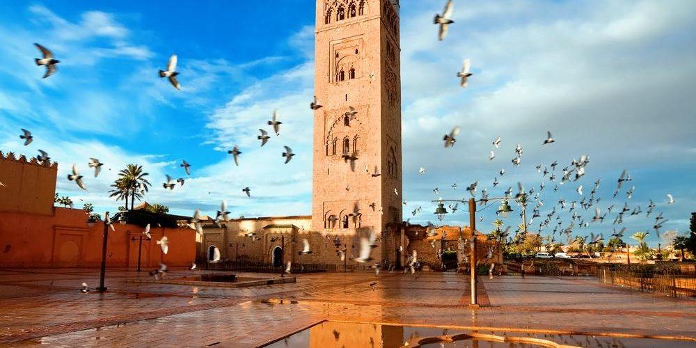 Across Morocco (Marrakech, Morocco)